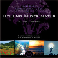 SyncSouls Kurz-Meditationen, Vol. 1 - Heilung in der Natur by Toni Cottura
